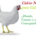 Calcio natural para gallinas