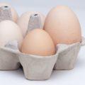 Alimentos para aumentar el tamaño de los huevos de gallina