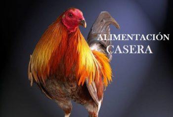 Comida para gallos