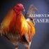 Alimento Casero para Gallos de Pelea