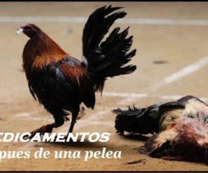 Medicamentos para curar gallos después de las peleas