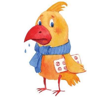gallina con ronquera