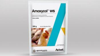 antibioticos para pollos