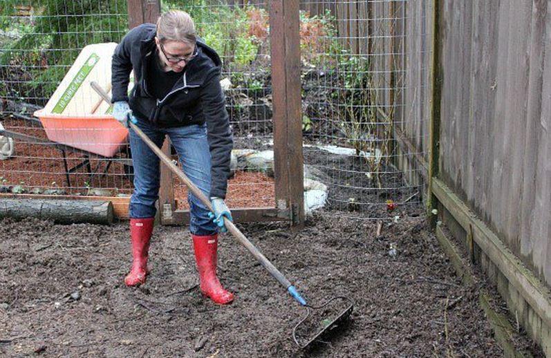 limpieza de corral de tierra