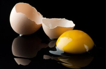huevo roto
