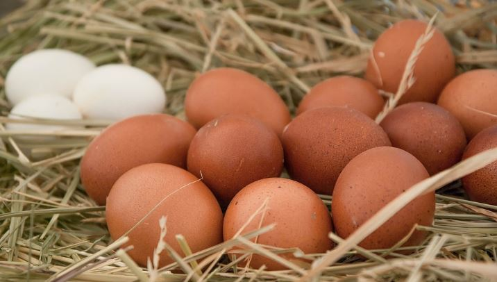 tratamiento para aumentar numero de huevo