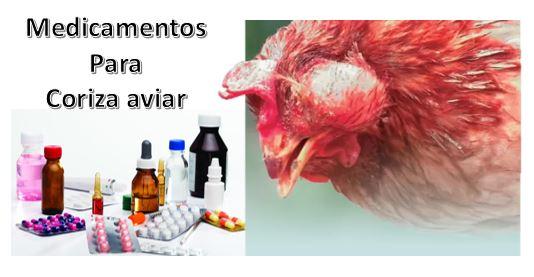 Vacuna para coriza aviar
